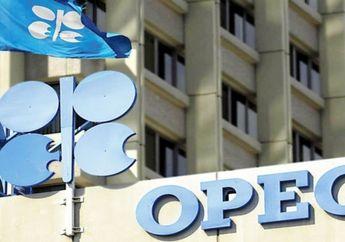 Lama Keluar dari OPEC, Apakah Bisa Sebabkan Ekonomi Indonesia Melemah?