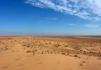 Mengintip Misi Para Ilmuwan untuk Menurunkan Hujan di Gurun Sahara