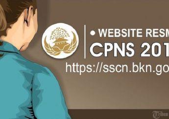 Catat! Begini Alur Pendaftaran Seleksi CPNS 2018 via SSCN BKN, Jangan Sampai Salah!