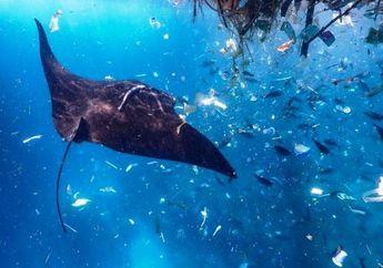 Indonesia Penyumbang Sampah Plastik Terbesar ke-2 di Dunia: Ini 3 Hal yang Bisa Kita Lakukan