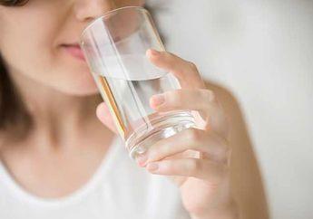 Alami Kelelahan? Coba Minuman dengan Bahan Alami Ini untuk Menambah Semangat