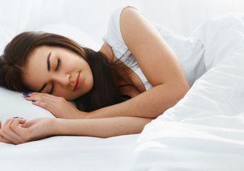 Ingin Tidurmu Berkualitas? Letakkan 5 Tanaman Berikut di Kamar Tidur
