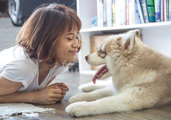 Ingin Memberikan Trik Menghilang Kepada Anjingnya, Perempuan Ini Malah Terpental, Ada Apa?