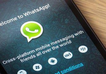 Jika Jadi Diluncurkan, Fitur Baru Whatsapp ini Bisa Dibenci Pengguna