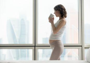 Beberapa Kondisi Ibu Hamil Ini Tidak Boleh Minum Jahe, Hati-hati Moms