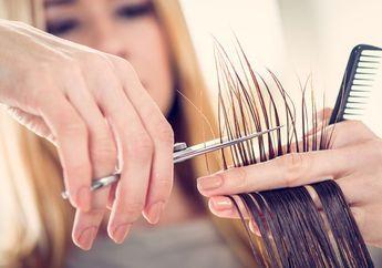 Jangan Terlalu Sering, ini Waktu yang Tepat Untuk Memotong Rambut