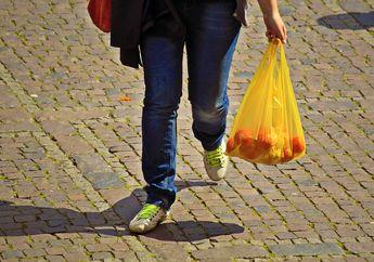 Mengapa Plastik Membutuhkan Waktu yang Lama untuk Bisa Terurai?