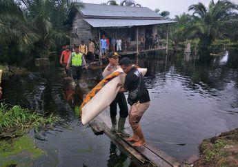 Berenang di Air Banjir, Bocah Asal Pekanbaru Tewas Diterkam Buaya