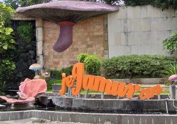 Pecinta Jamur? Coba Restoran Khas Serba Jamur di Yogyakarta