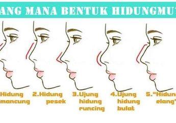 Cara Mudah Tebak Karakter Orang dari Bentuk Hidung, Kamu yang Mana?