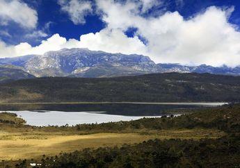 Berkunjung ke Danau Habema, Danau di Atas Awan yang Ada di Papua