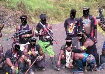 Dari Manakah Asal Senjata yang Digunakan KKB untuk Membantai Para Pekerja Proyek Jembatan di Papua?