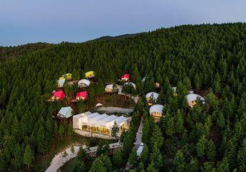 Colorful Glamping Resort, Rasakan Sensasi Berkemah dengan Tenda Mewah di Pedalaman Hutan Korea Selatan