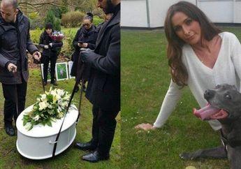 Pemakaman Untuk Anjing Ini Habiskan Rp72 Juta, Ternyata Inilah Bagian yang Paling Mahal
