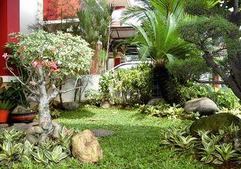 Buat Taman di Rumah Lebih Cantik Hanya dengan Melakukan 3 Cara Mudah Ini!