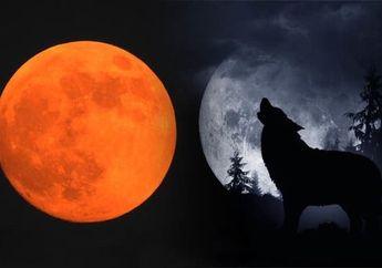 Hari Minggu Nanti Akan Terjadi 'Super Blood Wolf Moon', Apa itu dan di mana Saja Kita Bisa Melihatnya?