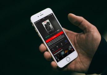 Akhirnya Pengguna IndiHome Bisa Akses Netflix Tanpa VPN