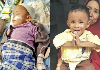 Pilu, Seorang Anak 7 Tahun Menderita Gagal Ginjal, Sang Ibu Berharap Mukjizat akibat Tak Ada Biaya