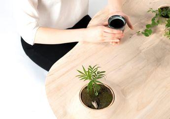 Meja Pokopoko, Meja Kopi yang Dirancang untuk Tempat Tanaman