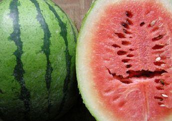 Hati-hati, Jangan Makan Semangka dengan Tanda Seperti Ini, Langsung Buang Saja! Begini Penjelasannya