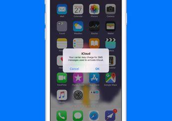 Mengatasi Masalah Gagal Aktivasi iMessage dan FaceTime dengan Nomor Telepon di iOS 12
