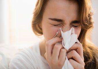 Kenali 5 Sumber Alergen di Dalam Rumah Anda untuk Bisa Hindari Alergi