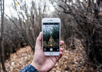 Foto Hasil Jepretan Kamera iPhone 6 Jadi Pemenang Kontes Fotografi