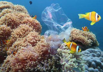 Dampak Perubahan Iklim Pada Ikan di Laut Bisa Dilihat Melalui Tengkoraknya