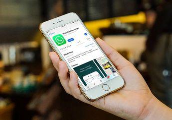 Lawan Hoax, WhatsApp Hadirkan Fitur Cek Fakta Pesan yang Diforward