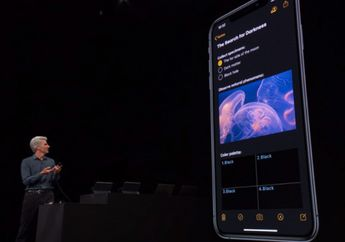 Beta Developer 8 dan Beta Publik 7 iOS 13, iPadOS, dan watchOS 6 Rilis