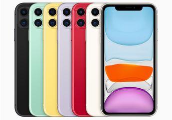 Pangsa Pasar iPhone 11 Meningkat di Eropa, Australia dan Jepang