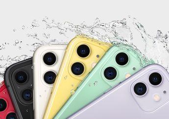 iPhone 11 Jadi Smartphone Paling Populer di Dunia, Setuju?