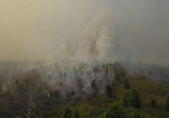 Kebakaran Hutan dan Lahan Timbulkan Masalah Kesehatan Pada Anak di Masa Depan