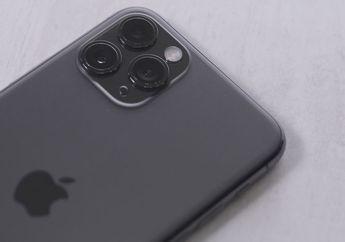 Saham Apple Catat Rekor Harga Tertinggi Sepanjang Sejarah