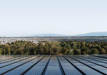 Lisa Jackson Bahas Inovasi dan Perlindungan Lingkungan di Apple