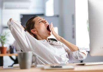 Sering Ngantuk Setelah Makan Siang? Wah, Harus Waspada Jangan-Jangan Anda Alami Gangguan Kesehatan Ini!