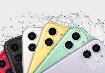 iPhone 11 Ternyata Lebih Diminati Pengguna di Amerika Serikat