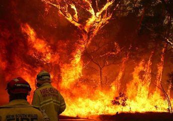 Apple Lakukan Donasi Untuk Tuntaskan Kasus Kebakaran Lahan Australia