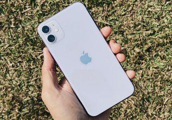 Cara Menggunakan Fitur Capture Outside the Frame di iPhone 11