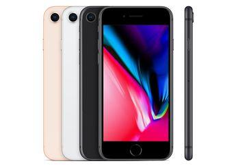 iPhone Baru dengan Harga Murah Segera Diproduksi, Mulai Dijual Maret