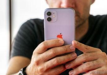 iPhone 11 Kuasai Penjualan Smartphone Kuartal 4 2019 Secara Global