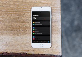 WhatsApp Dark Mode Akan Tersedia Eksklusif untuk iOS 13