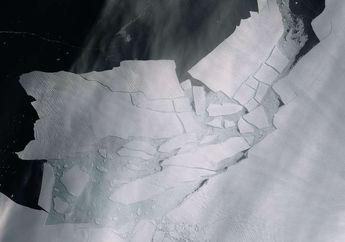 Gletser Pine Island di Antartika Runtuh, Populasi Penguin Terancam