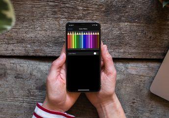 Cara Kalibrasi Warna Layar iPhone di iOS 13, Biar Gak Yellowish!