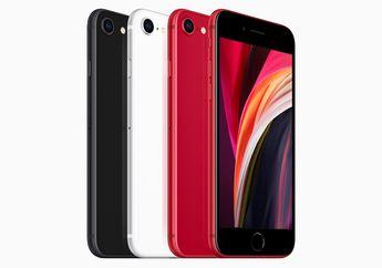 iPhone SE 2020 Nongol di Web TKDN Kemenperin, Kapan Resmi Dijual?