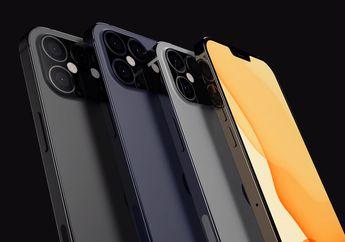 Samsung Display Masih Jadi Pemasok Utama untuk Layar iPhone 12