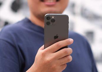 Update iOS 13.5 Beta: Lebih Mudah Buka Password Ketika Gunakan Masker