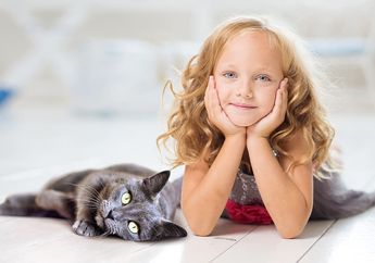 Jangan Disepelekan, Bulu Kucing Juga Bisa Berbahaya Bagi Kesehatan, Ini Sederet Alasannya
