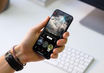Akhirnya! Pengguna Indihome dan Telkomsel Bisa Akses Netflix Tanpa VPN