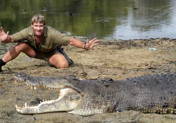 Kematian Steve Irwin Bagai Pisau Panas yang Menembus Mentega